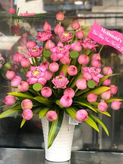 Bình hoa sen tuyệt đẹp