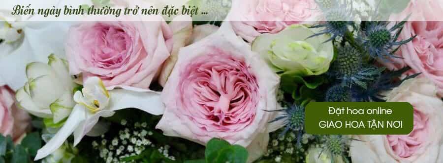 Dat hoa online giao hoa tan noi