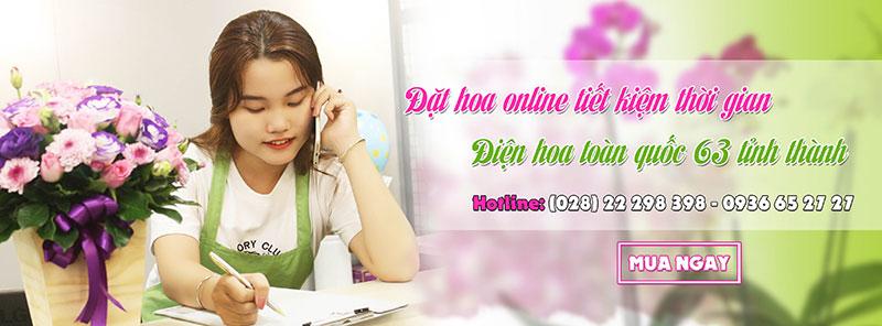 dat hoa online