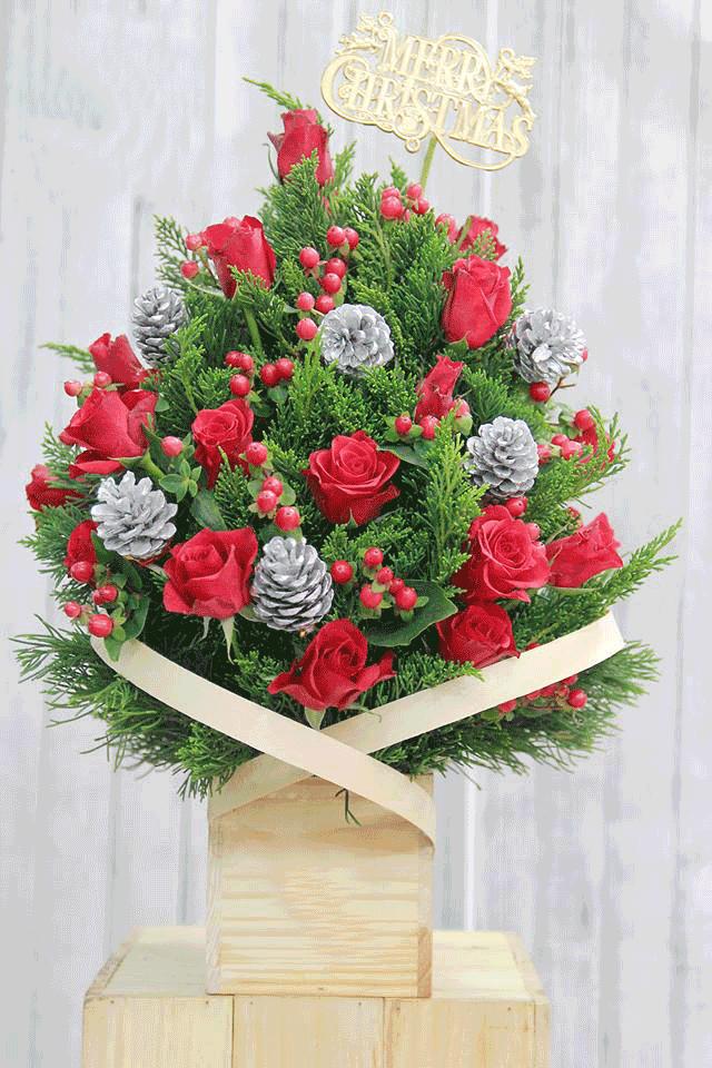 Hoa chúc mừng giáng sinh - Giáng sinh an lành