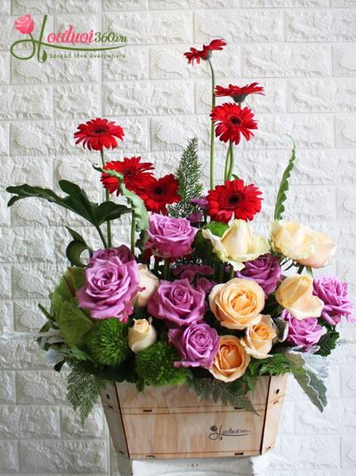 Hoa sinh nhật - Tình yêu thơ ngây