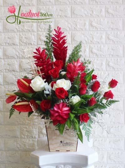 Hộp hoa chúc mừng - Sắc đỏ