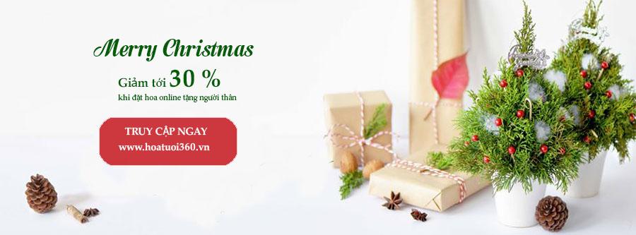 Merry Christmas giam 30%