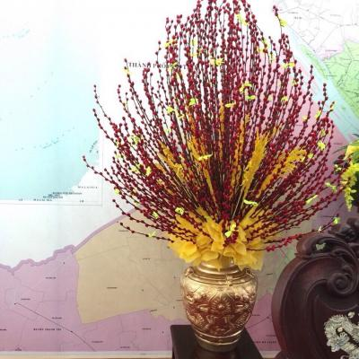 Bình hoa tầm xuân - An khang thịnh vượng