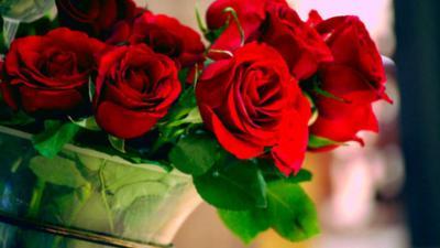 Bí quyết chọn hoa hồng đỏ cực chuẩn, bạn có biết?