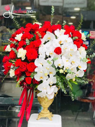 Bình hoa chúc mừng - Tia nắng lung linh