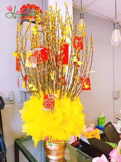 Bình hoa nụ tầm xuân vàng - Cung chúc tân xuân