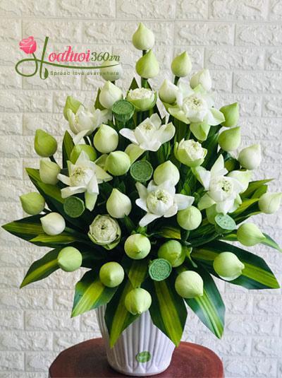 Bình hoa sen trắng - Thông thái