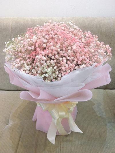 Bó baby hồng  - Giấc mơ tình yêu