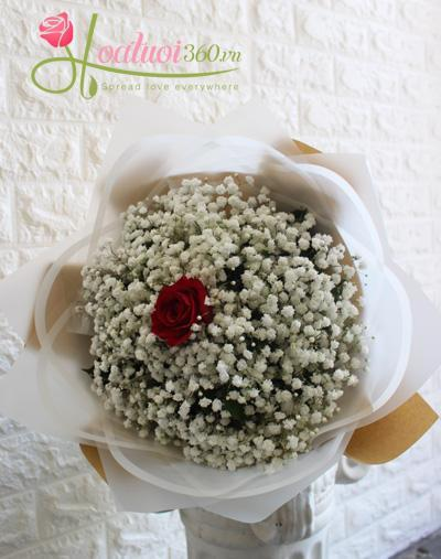 Bó hoa baby - Chỉ vì yêu