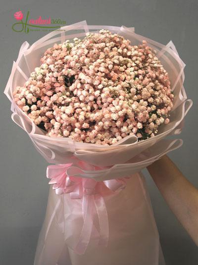 Bó hoa baby hồng - Sự quan tâm