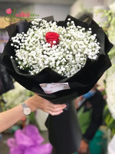 Bó hoa baby- Một tình yêu