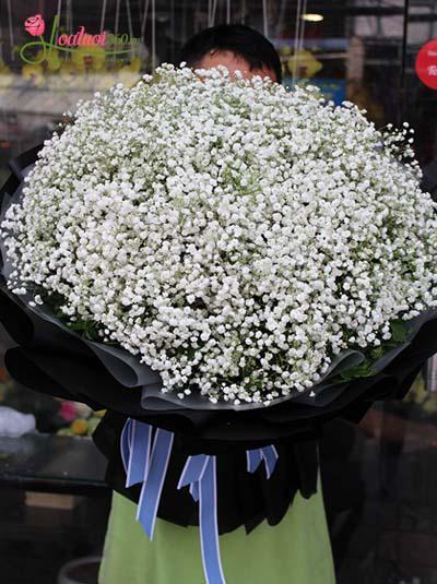 Bó hoa baby trắng - Hạnh phúc vỡ òa