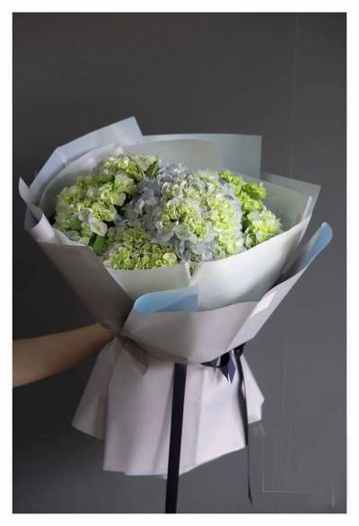 Bó hoa cẩm tú cầu: Nàng thơ