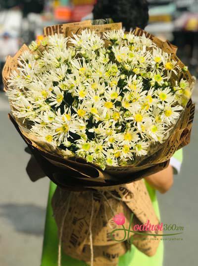 Bó hoa cúc họa mi - Hà Nội mùa thay lá