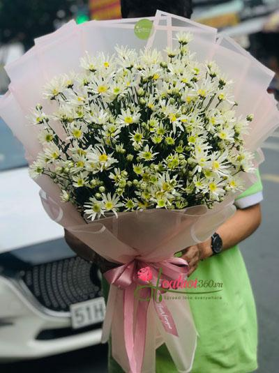 Bó hoa cúc họa mi - Hà Nội xa nhớ