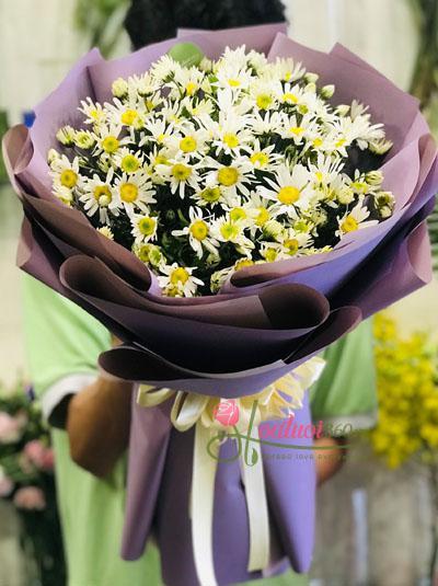 Bó hoa cúc họa mi - mộng mơ