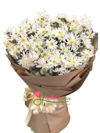 Bó hoa cúc họa mi - Mùa đông không lạnh