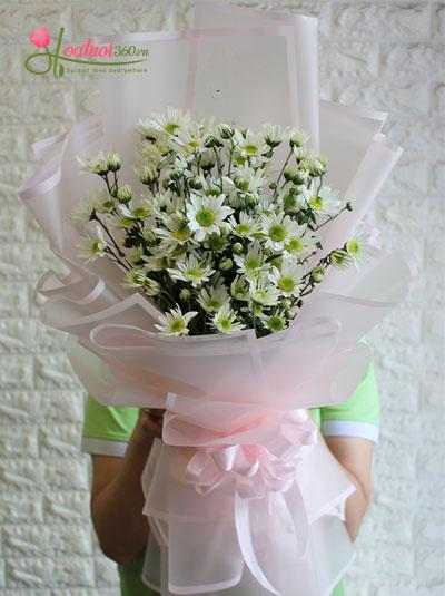 Bó hoa cúc họa mi - Trắng ngần