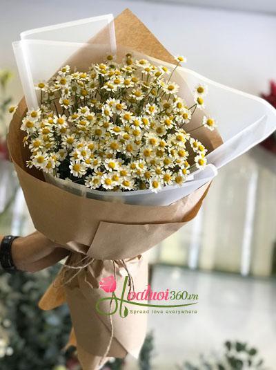 Bó hoa cúc tana đáng yêu