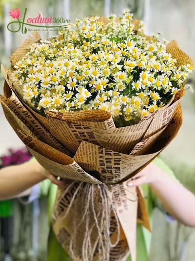 Bó hoa cúc tana - Dành tặng em