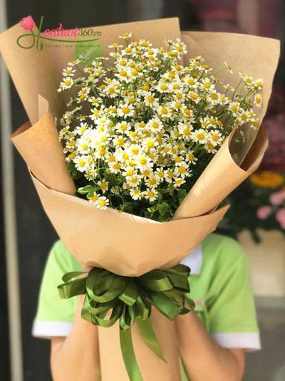 Bó hoa cúc tana đẹp tuyệt