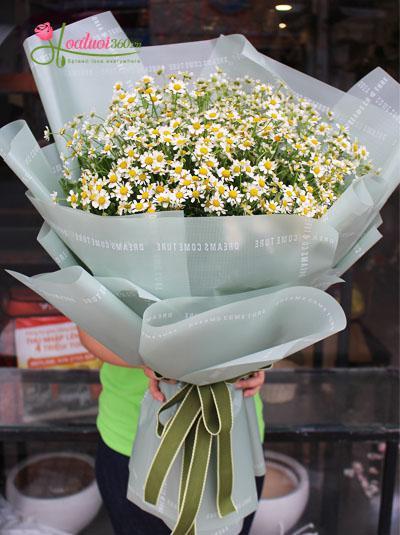 Bó hoa cúc tana - Người tình bé nhỏ