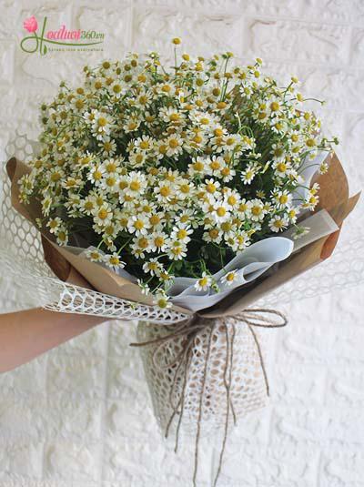 Bó hoa cúc tana - Đồng nội
