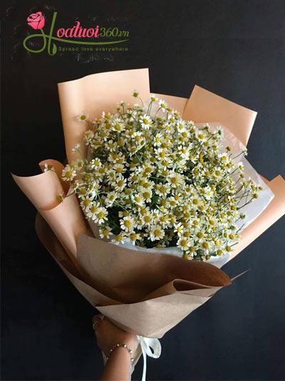Bó hoa cúc Tana - Giản dị