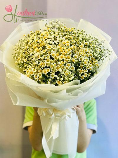 Bó hoa cúc tana kết hợp baby Hà Lan