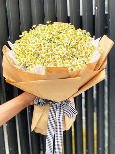 Bó hoa cúc tana lớn