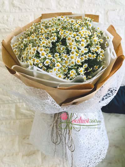 Bó hoa cúc tana- Nét đơn sơ