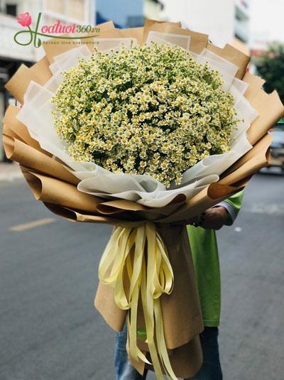 Bó hoa cúc tana - Ngày nắng mai