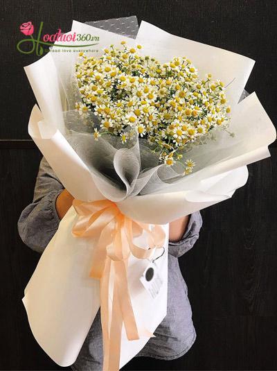 Bó hoa cúc tana - Vương vấn