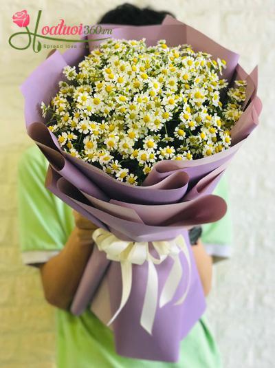 Bó hoa cúc tana - Yêu em nhất mà
