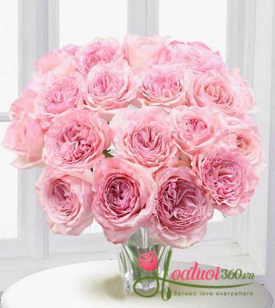 Bó hoa hồng O'hara dễ thương đẹp lộng lẫy tặng người yêu