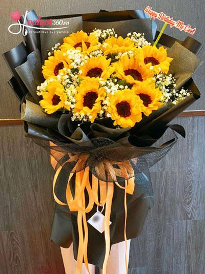Bó hoa hướng dương - Cười vang