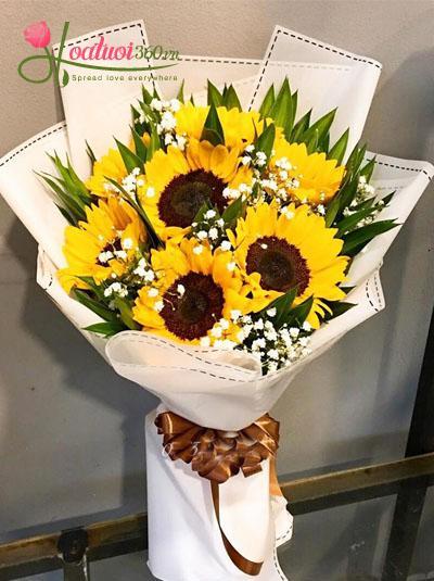 Bó hoa hướng dương kết hợp Baby Hà Lan