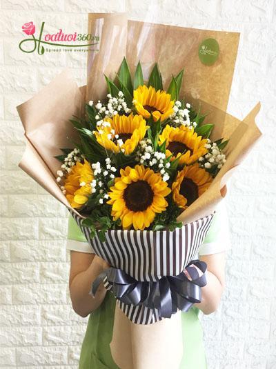 Bó hoa hướng dương phối hợp baby Hà Lan