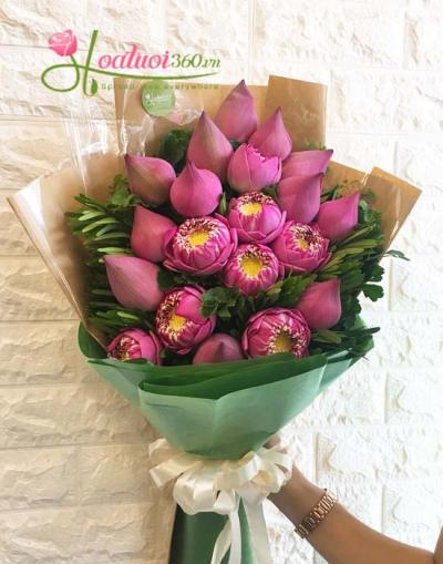 Bó hoa sen hồng