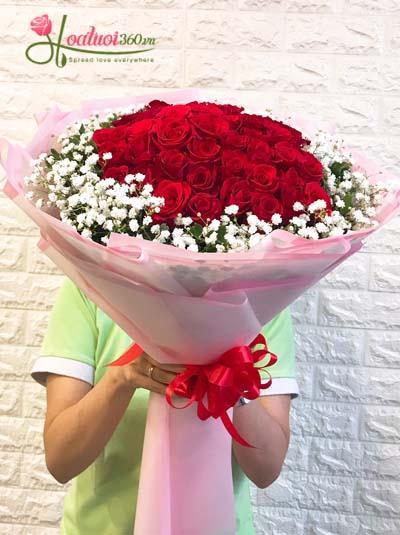 Bó hồng đỏ Hàn Quốc