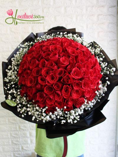 Tuyển tập các loại hoa có màu đỏ mang tượng trưng cho tình yêu Bo-hong-do-ket-hop-baby-tan-chay-tim-nang482
