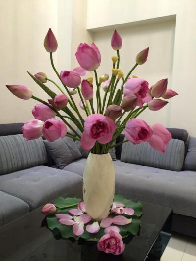 Các bí quyết cắm hoa sen giúp hoa tươi lâu hơn