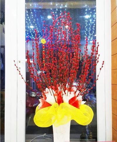 Bình hoa tầm xuân - Chúc mừng năm mới