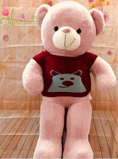 Gấu bông dễ thương màu hồng 1m1