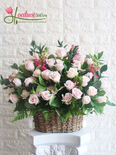 Giỏ hoa chúc mừng - Điều ước hoa hồng