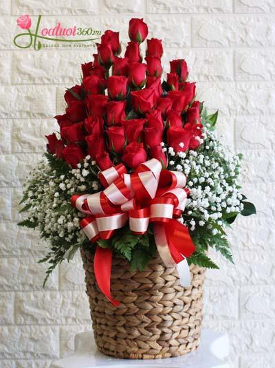 Giỏ hoa chúc mừng hồng đỏ kết hợp baby