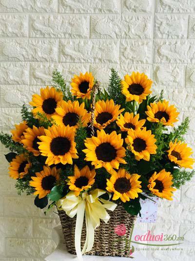 Giỏ hoa hướng dương - Nắng vàng