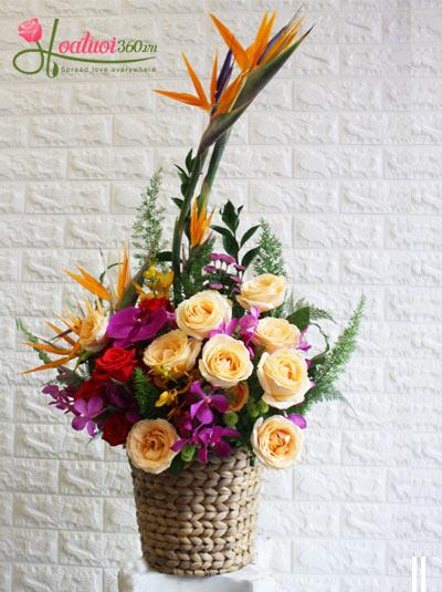 Giỏ hoa tươi - Hy vọng