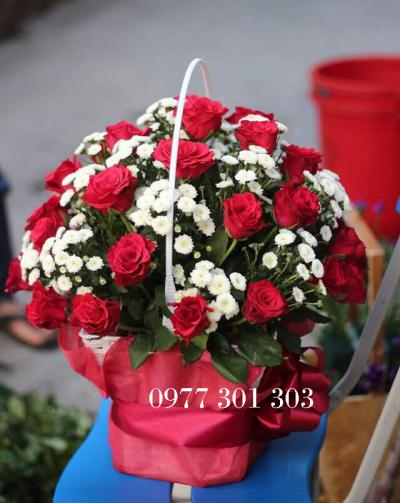 Giỏ hồng cúc Calimero